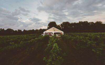 Winery Wedding Venues: Unique Features