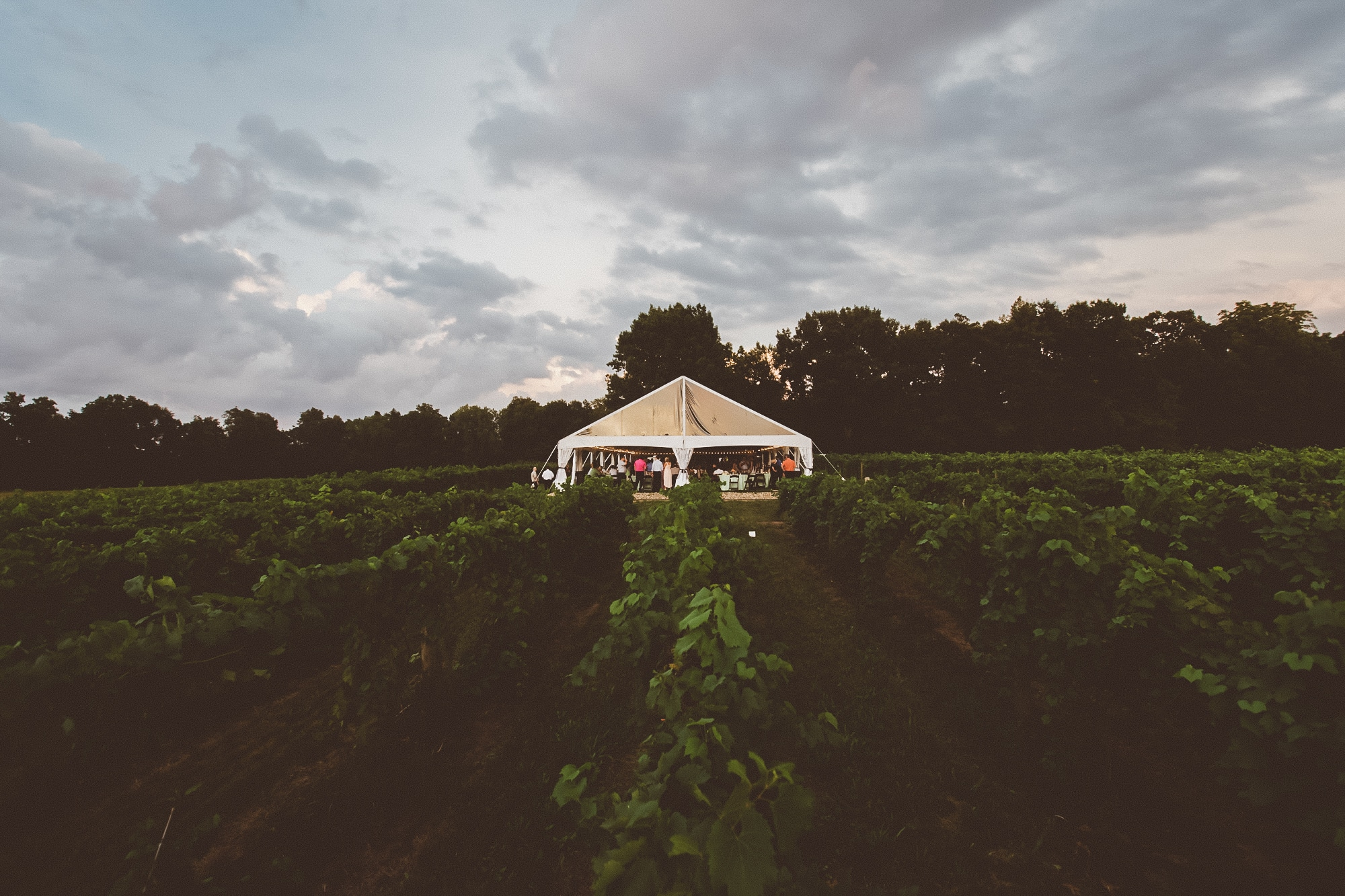 Winery Wedding Venues: Unique Features